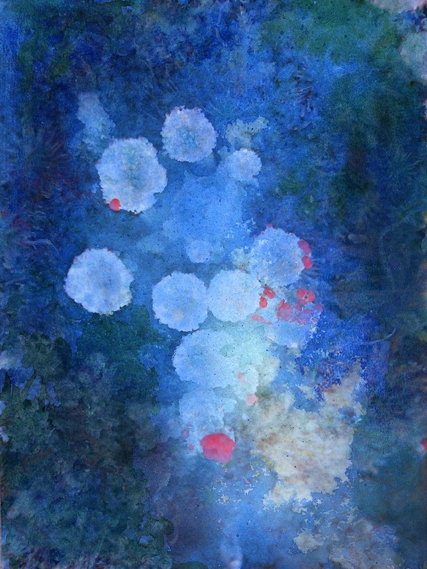Mamba Artwork by Alice Starmore